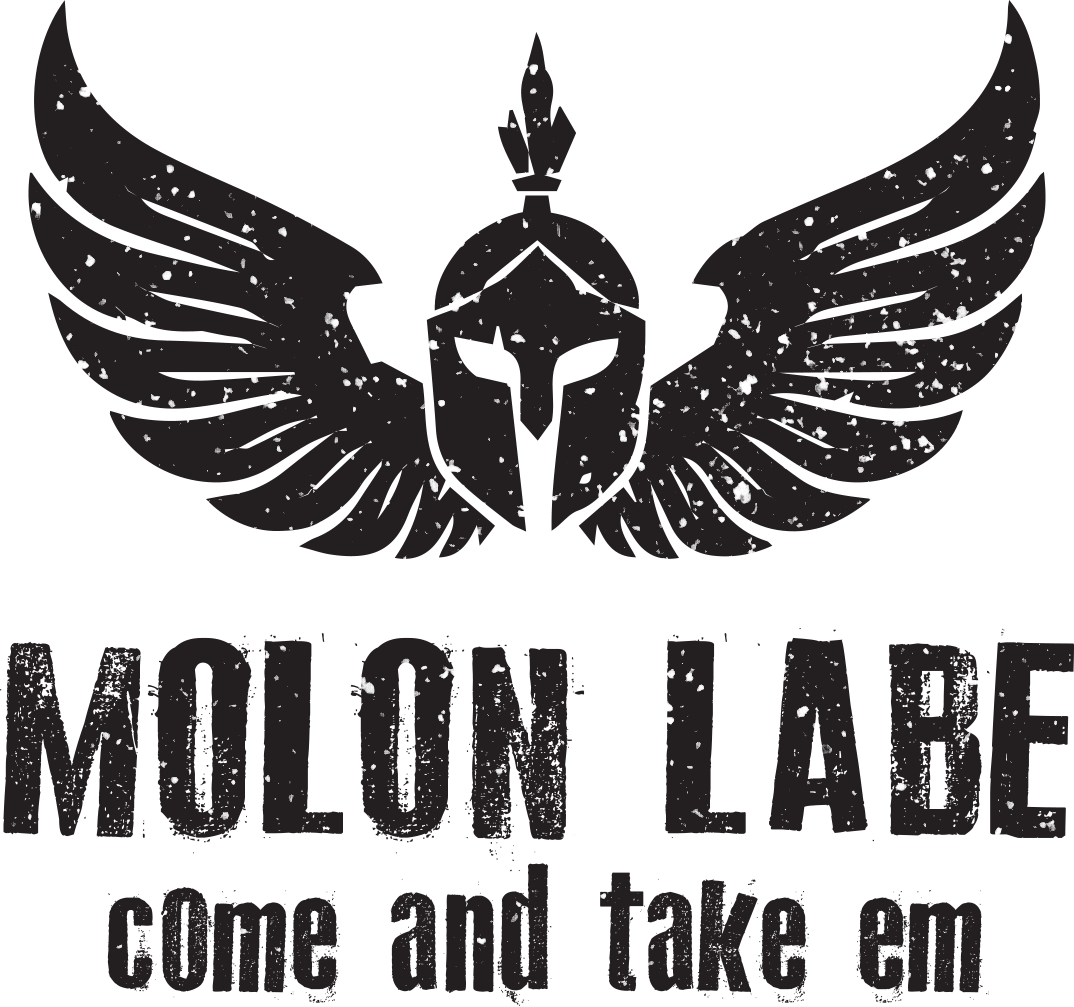 Molon Labe,Come And Take It,American Flag,1911,3/%,Punisher Skull,NRA,Vinyl Decal
