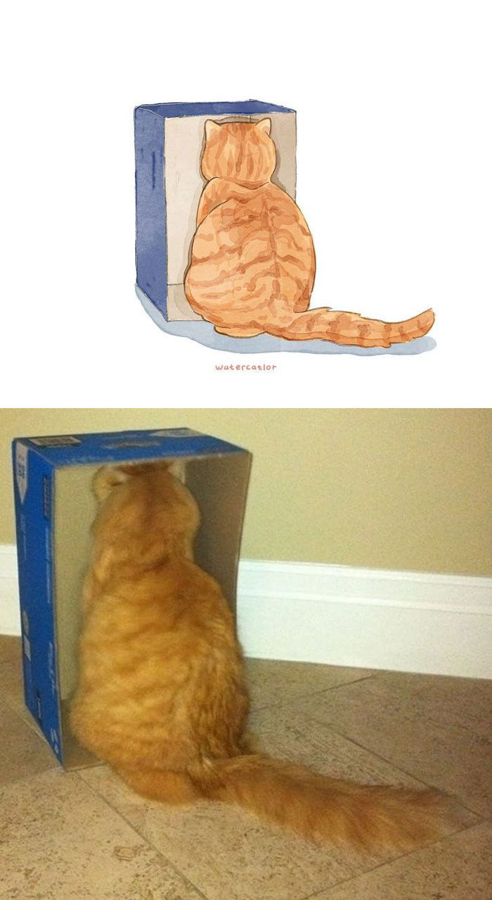 """30 """"Watercolorized"""" Versions Of The Internet's Funniest & Most Famous Cats"""