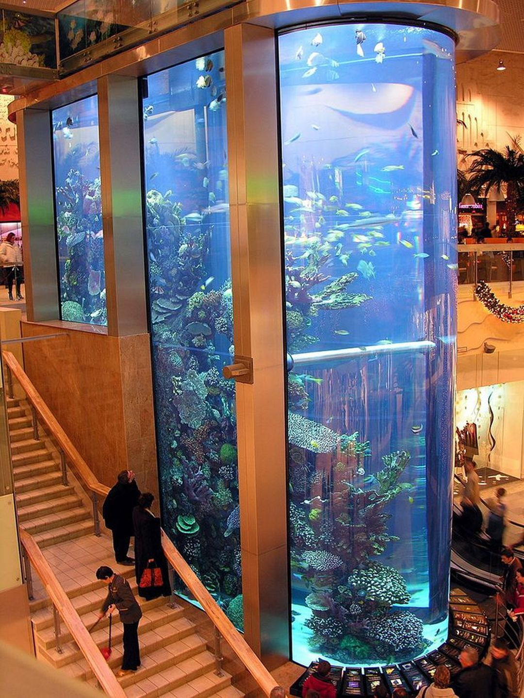 11+ Incredible Aquarium Designs That You Can Try To Make