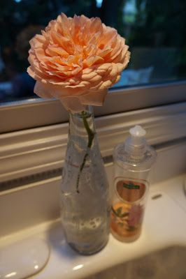 One of the last roses of summer stuck in an Evian bottle; the pink rose echos the pink Palmolive dishwashing liquid. Cute! by Moments of Delight...Anne Reeves