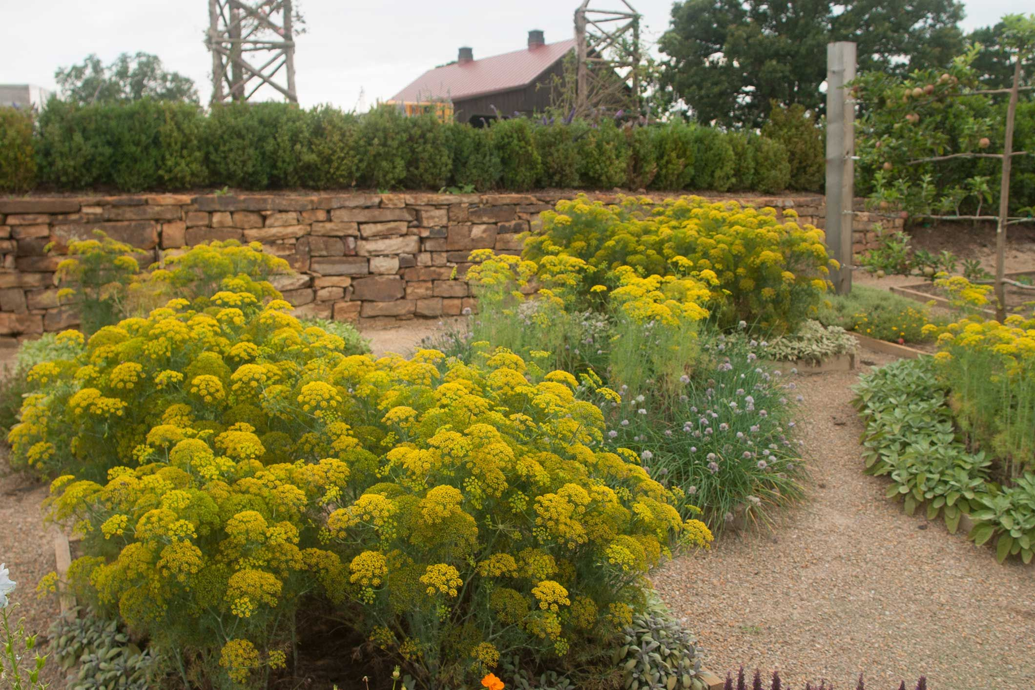 Plants for retaining wall | Garden | Pinterest | Retaining walls ...