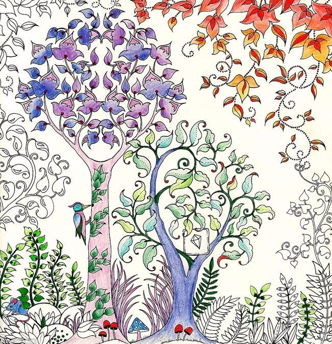 Artist Johanna Basford Creates Coloring Books For Adults And Has Sold Over A Million Copies Already