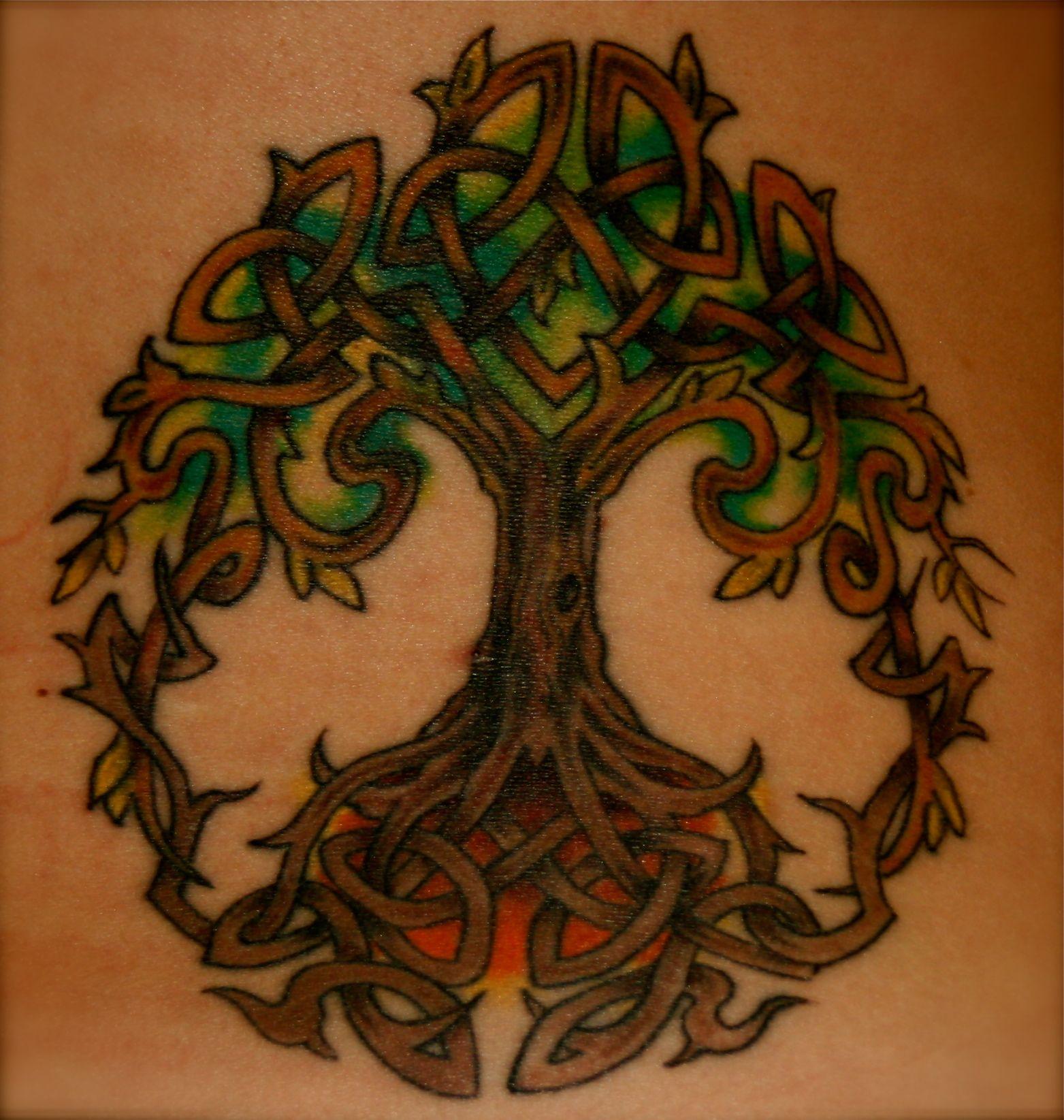 Celtic Tree of Life Tattoo | Celtic tree tattoos, Life ...