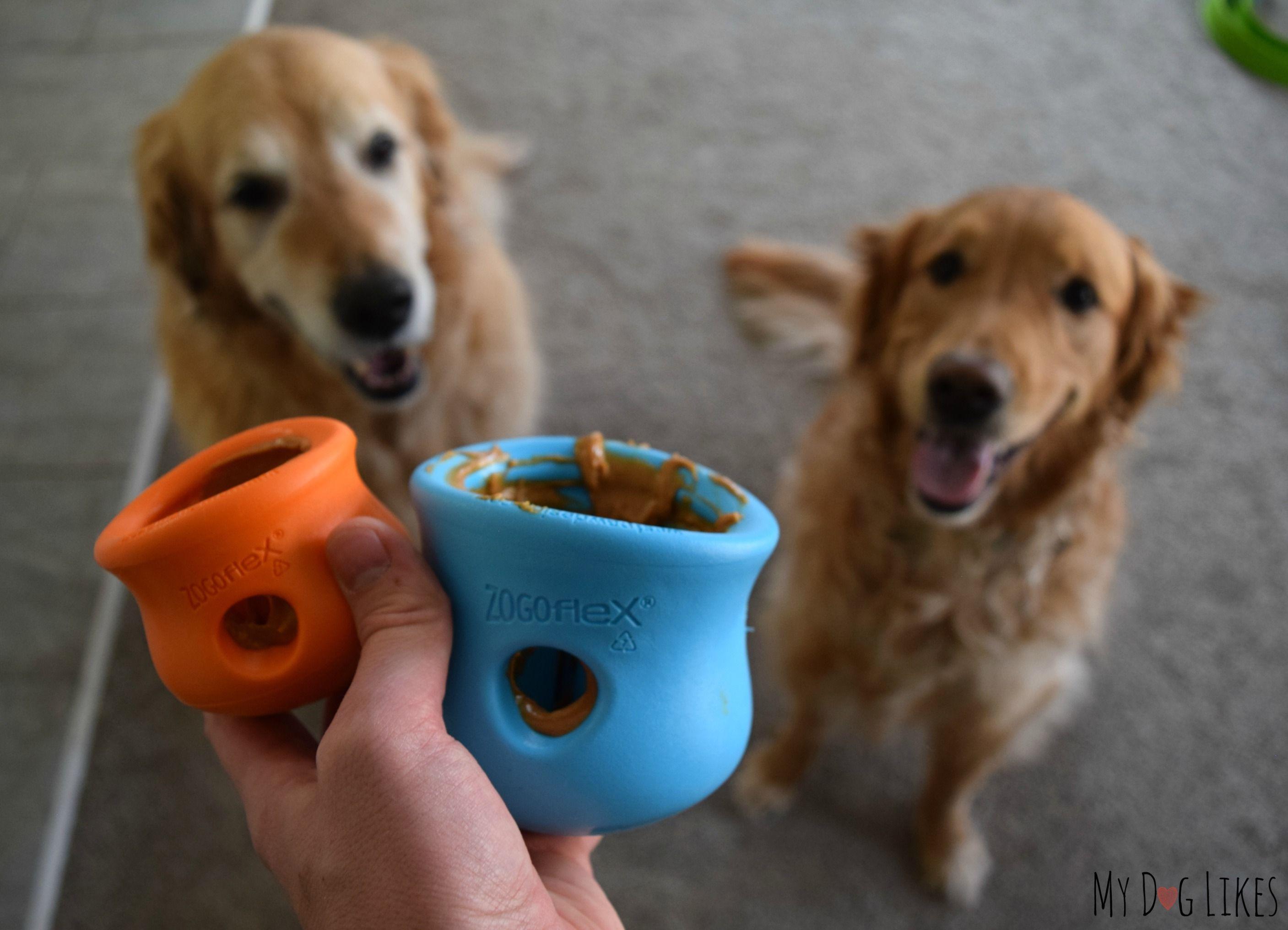 West Paw Design Toppl Review Tough Chewing Treat Dispensing Fun