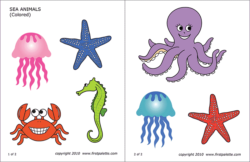 It's just a graphic of Free Printable Sea Creatures pertaining to invertebrate