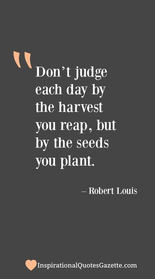 Don't Judge Each Day By The Harvest You Reap But By The Seeds You Awesome Planting Seeds Inspirational Quotes