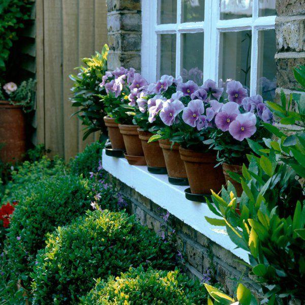 vorgarten gestalten 33 bilder und gartenideen jardin pinterest vorgarten gestalten. Black Bedroom Furniture Sets. Home Design Ideas
