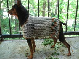 Chain Dog Coat Chainmail Glove Dog Coats Pet Peeves