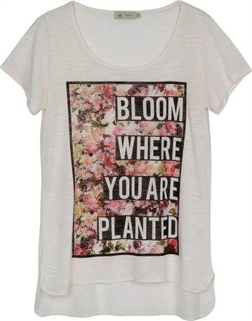 37b462c8e5 CAMISETA ESTAMPADA - Feminina - Blusas Camisetas - Anne Kanner - Urban