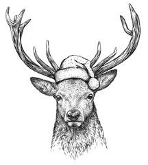 deer, black and white engrave. Christmas hat.