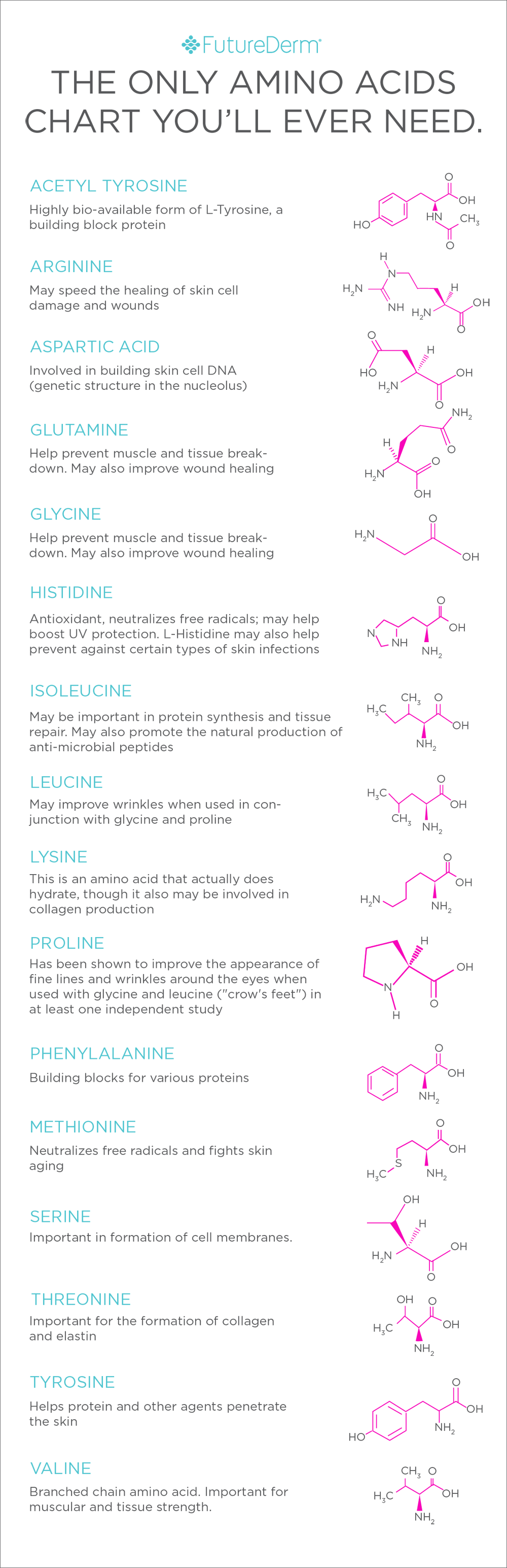 Do Amino Acids Actually Do Anything In Skin Care  Chart School