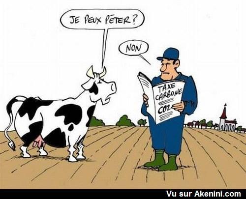 Taxe carbone les vaches ne petent plus carbon tax cows - Vache dessin humour ...