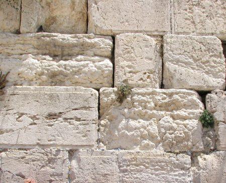 luke temple stones