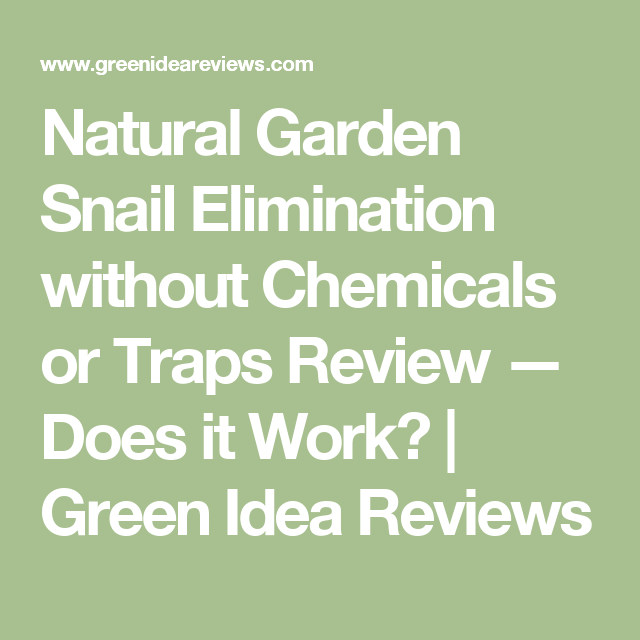 Natural Garden Snail Elimination without Chemicals or Traps Review — Does it Work? | Green Idea Reviews