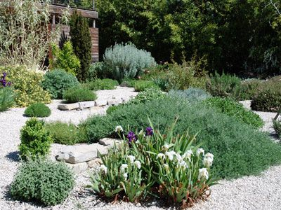 Un jardin méditerranéen sans arrosage (Jardins de paysagistes ...