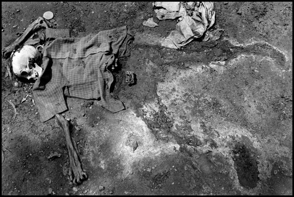 forensic photography - Google Search