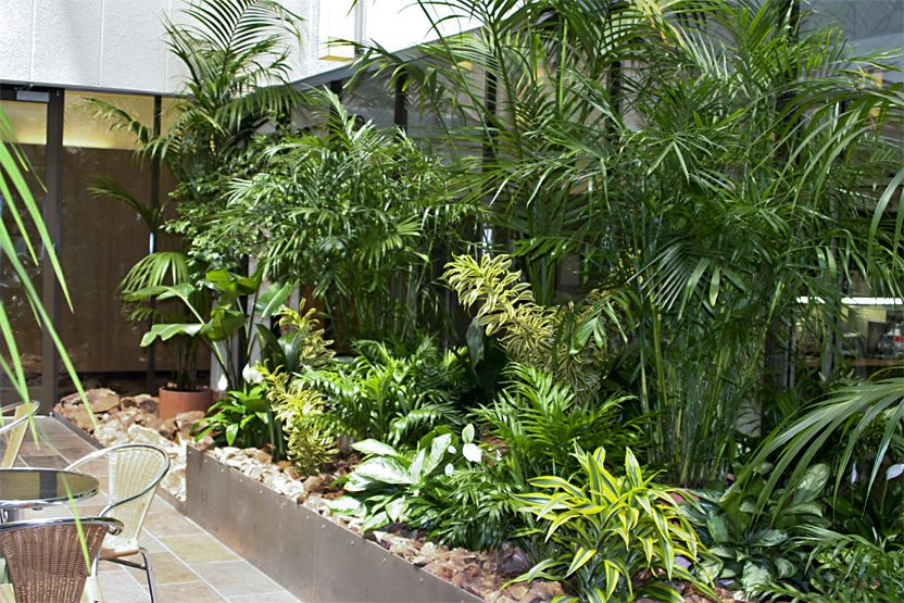 Indoor atrium residential google search indoor garden for Residential atrium