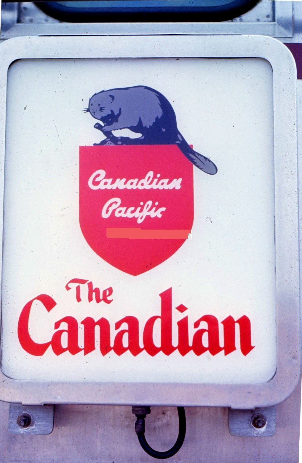 White Canadian drumhead. Ebay seller ID removed.