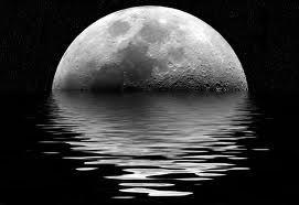 Risultati immagini per luna fantasy