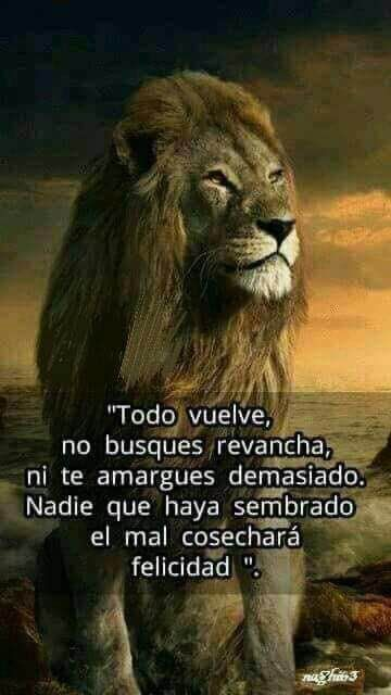 Sergio Barrientos En Twitter Una Ley De Vida Https T Co Evv8zyq2eo Spanish Inspirational Quotes Spanish Quotes Reality Quotes