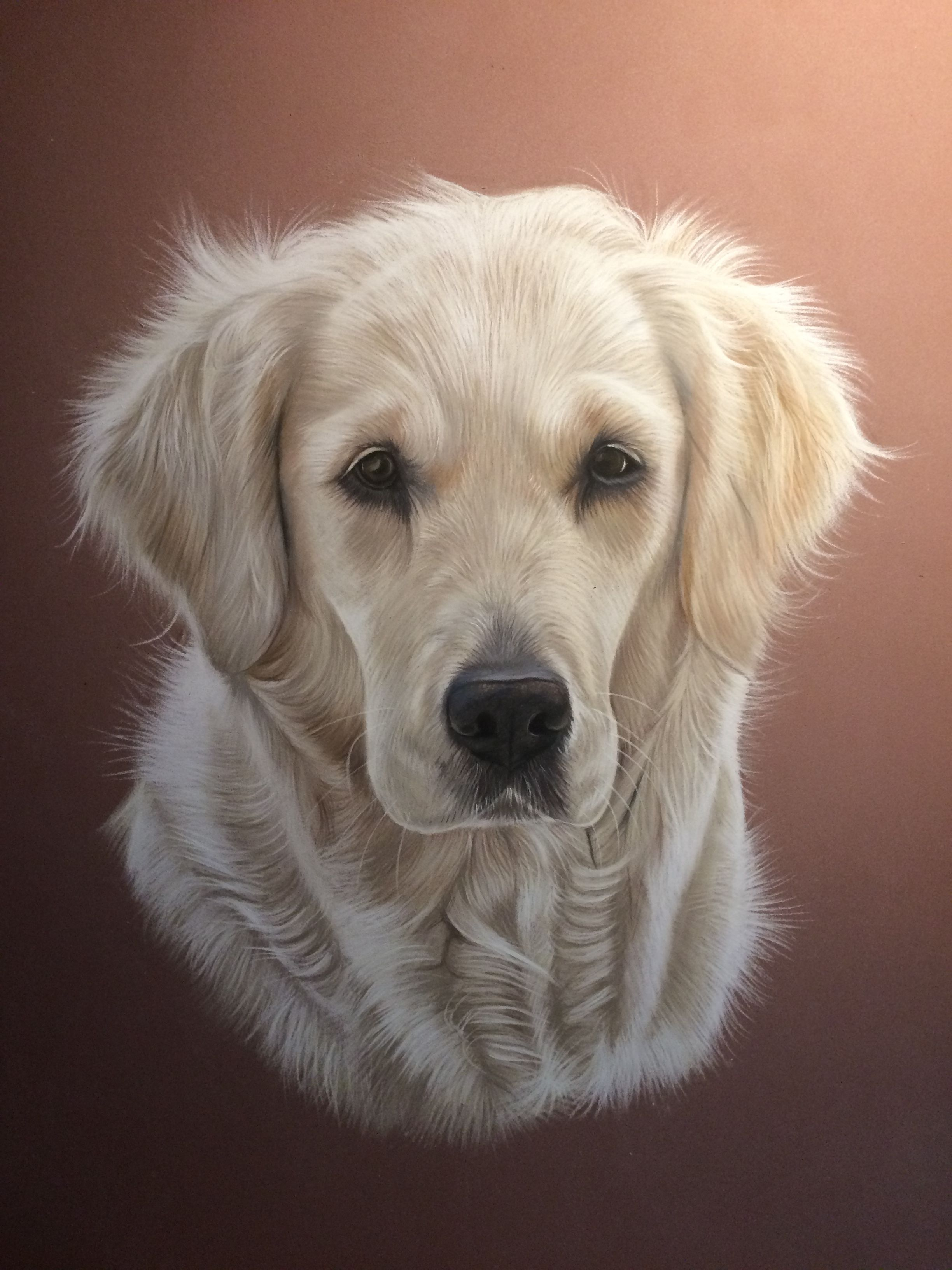 chien Golden retriever dessiné au pastel | Animal Art en ...
