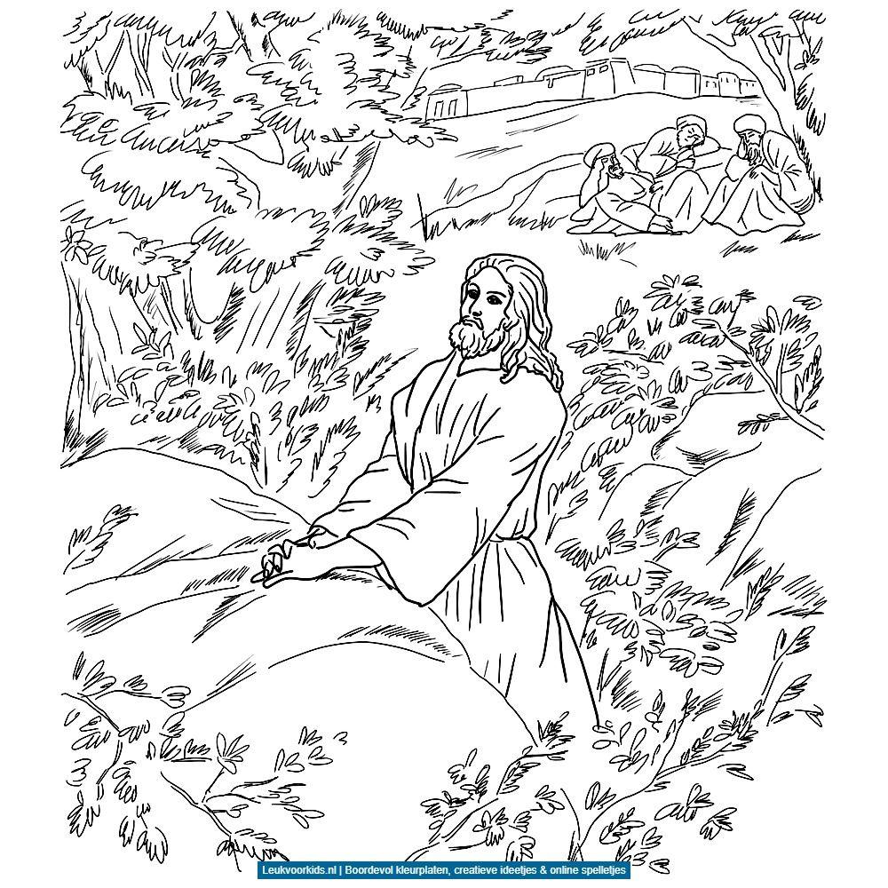 Jezus Bidt In De Hof Van Getsemane Kleurplaten V Kinderen Pinterest