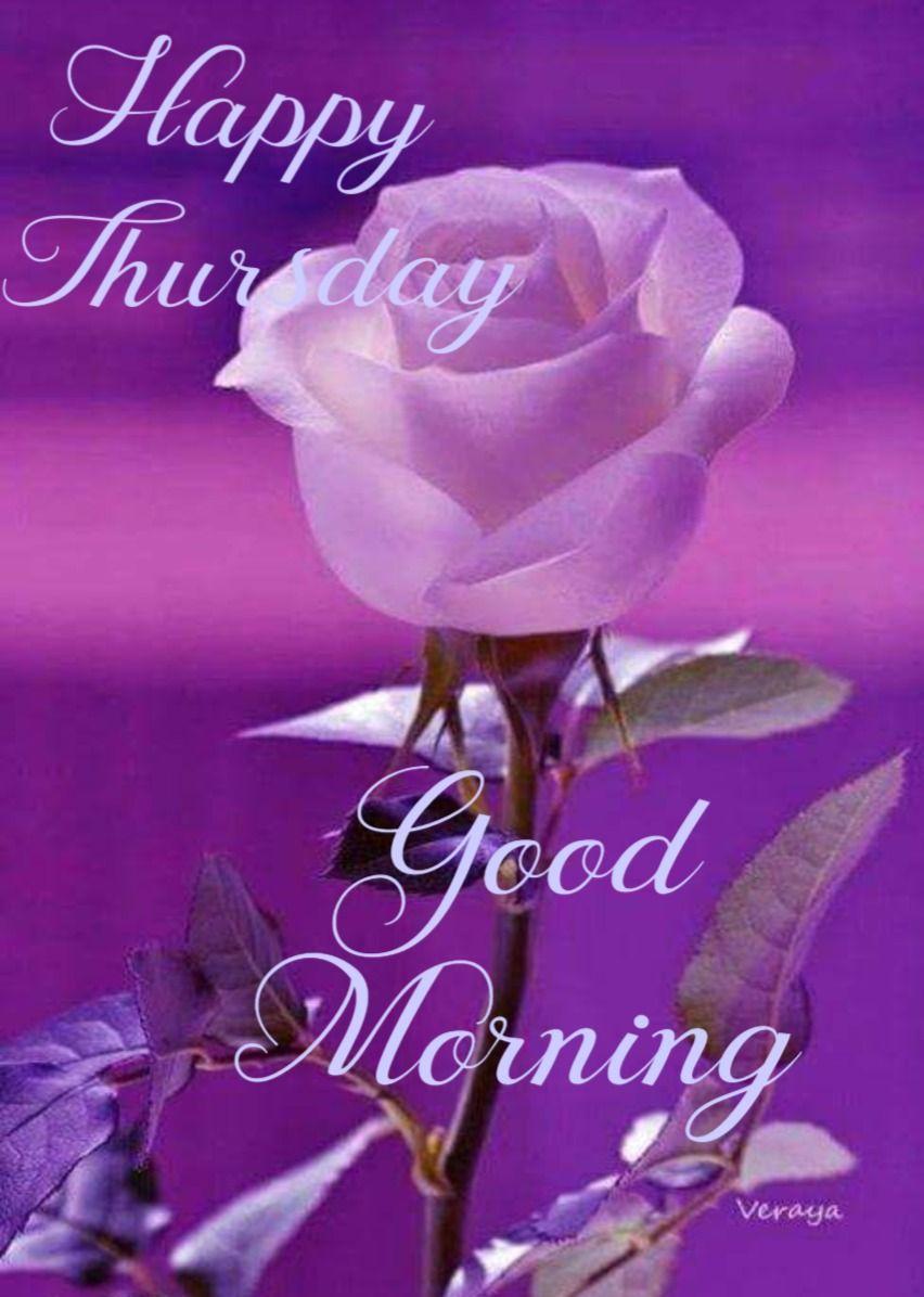 Amanecer Porn Family happy thursday greetings | good morning happy thursday, good