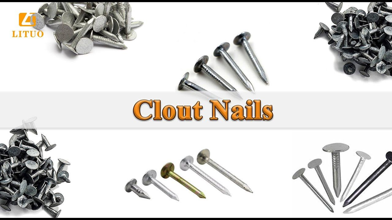 Lituo Clout Nail Full Details In 2020 Clout Nails Roofing Nails Types Of Nails