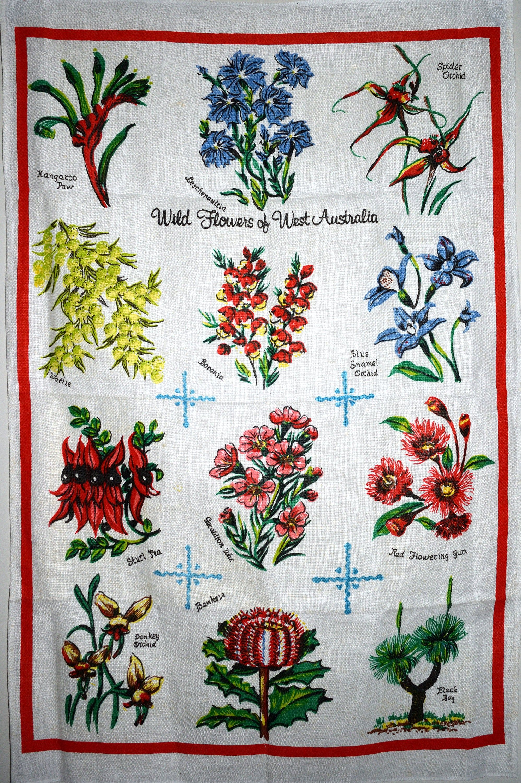 Reserved Beautiful Western Australian Wildflowers Tea Etsy Australian Wildflowers Vintage Souvenir Wild Flowers