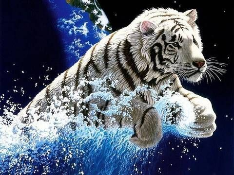 Fondo De Pantalla Con Movimiento Para Pc Windows 7 Buscar Con Google Pantalla En Movimiento Fondos De Pantalla En Movimiento Tigres Blancos