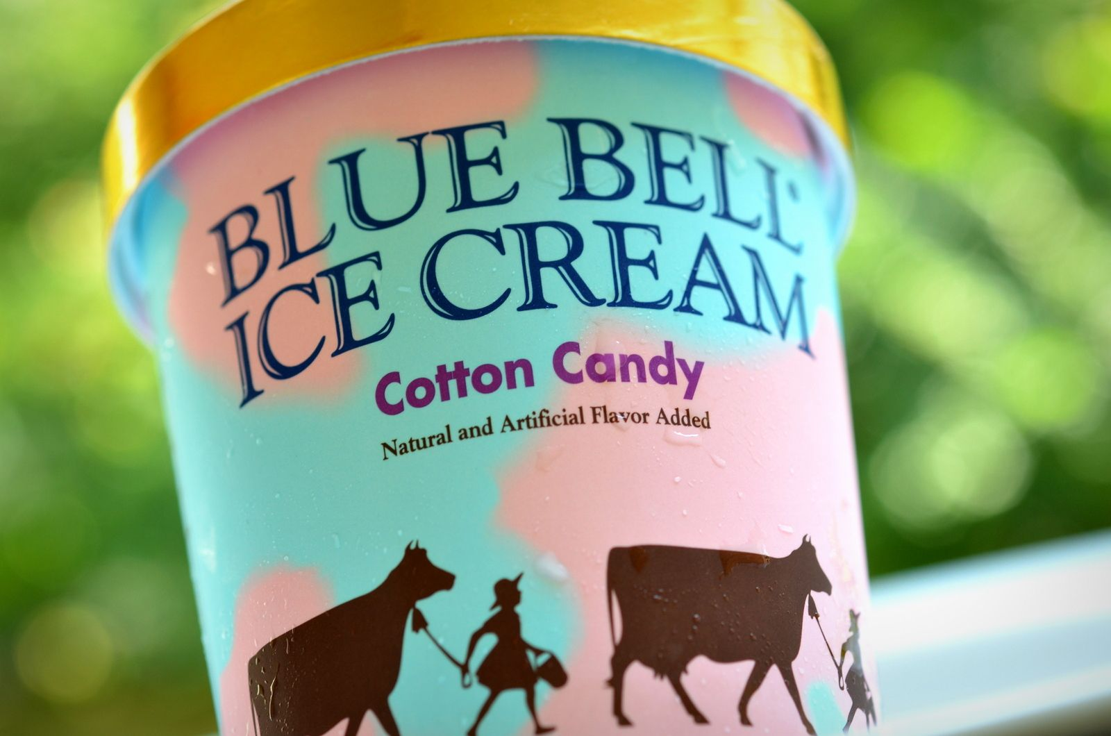 The Ice Cream Informant REVIEW Blue Bell Cotton Candy Bell bell