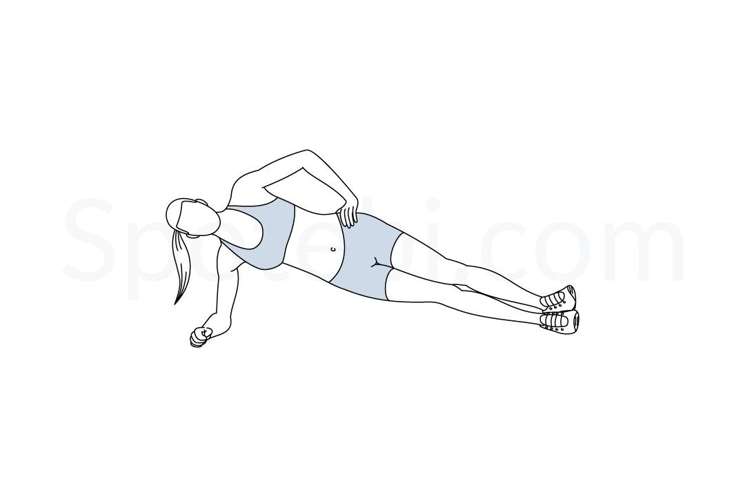 Side Plank | Illustrated Exercise Guide | Workout guide, Abs and obliques  workout, Oblique workout