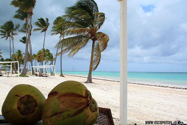 Juanillo Beach Punta Cana Dominican Republic Vacation Beaches Http