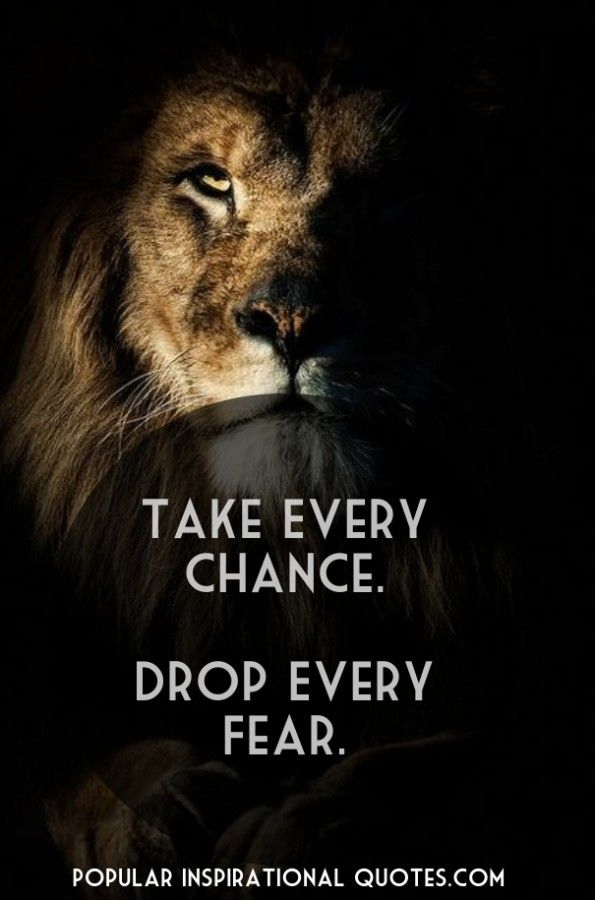 Fear Quotes Impressive Take Every Chance Drop Every Fear  Quotes  Pinterest  Drop .
