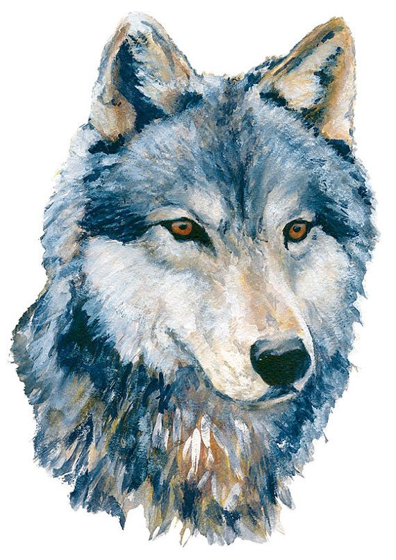 FREE SHIPPING 8.5 x 11 Print Canadian Timber Wolf by Ghirardelli, $15.00