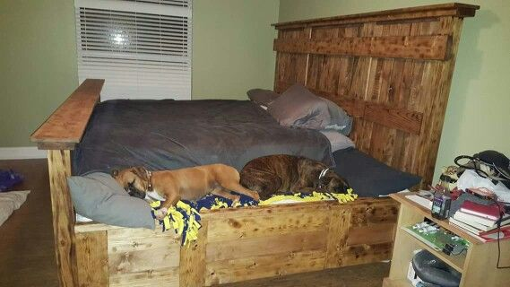 Spoiled Pets Dog Bed Attached To A King Size Bed King Bed Frame Custom Bed Wooden Dog Bed