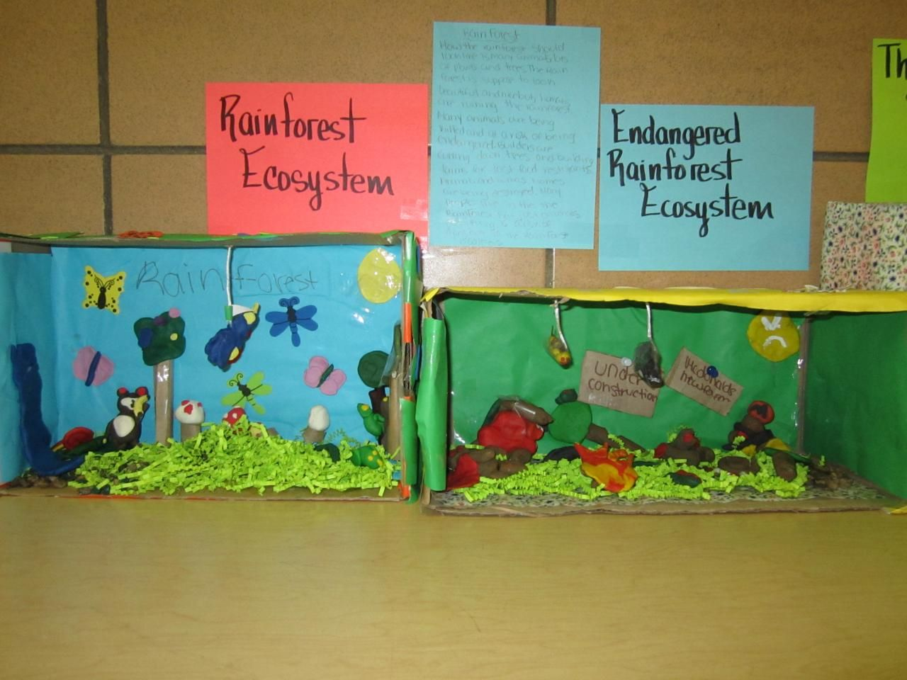 Ecosystem Science Projects