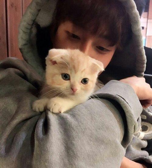 image de ulzzang boy and cat garçons pinterest ulzzang boy