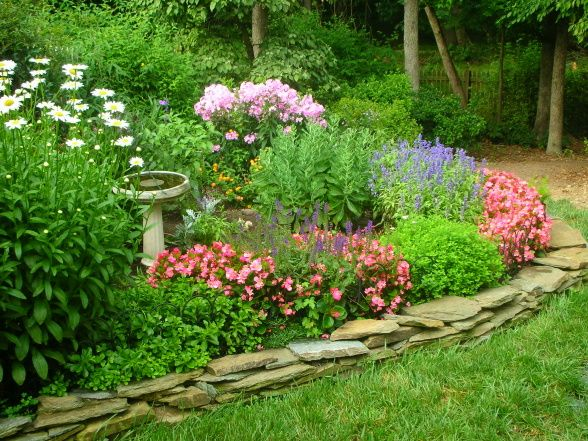 Bumble Bee Heaven Garden Designs Decorating Ideas Hgtv Rate My Space Garden Flower Beds Garden Design Shasta Daisies