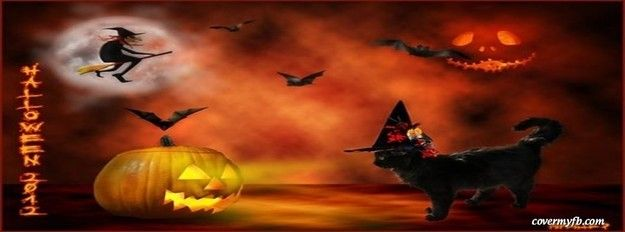 Cute Cat Witch Facebook Cover With Images Halloween Facebook