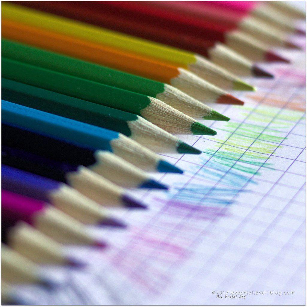 Projet365 Jour 48 Colore Le Petit Carnet D Evelyne Colore Carnet Couleur