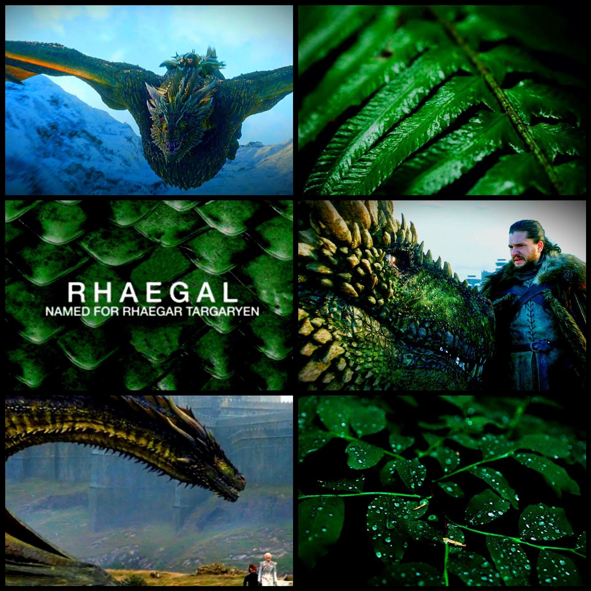 Rhaegal | Game of thrones artwork, Mother of dragons, Game ...