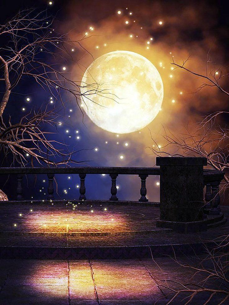 сказочная луна и ночь картинки конструкция