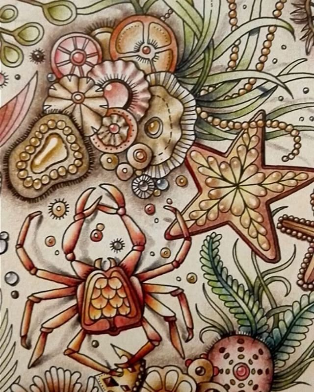 I Felt The Photos Couldnt Catch Colors Find This Pin And More On Coloring Johanna Basford