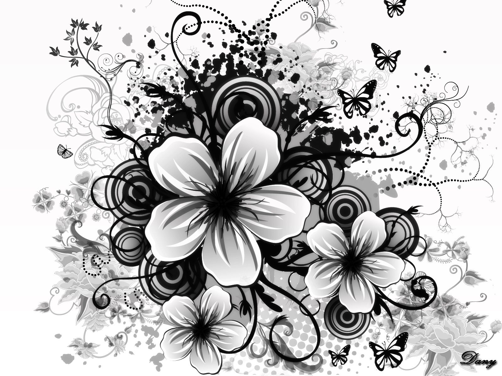 Flower Drawings In Black And White 12 15 03 36 13 23091
