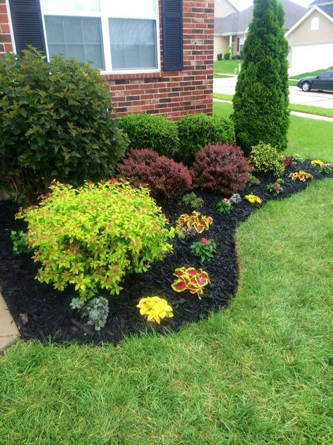 Nice Yard Ideas · Beautiful Flowerbed! Black Mulch Made A Big Difference!