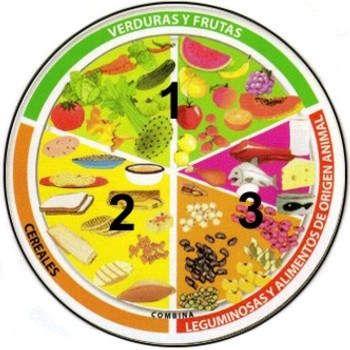 Cuántas Porciones Debemos Comer Al Día Del Plato Del Buen Comer Plato Del Buen Comer Plato Del Bien Comer Buenos Habitos Alimenticios
