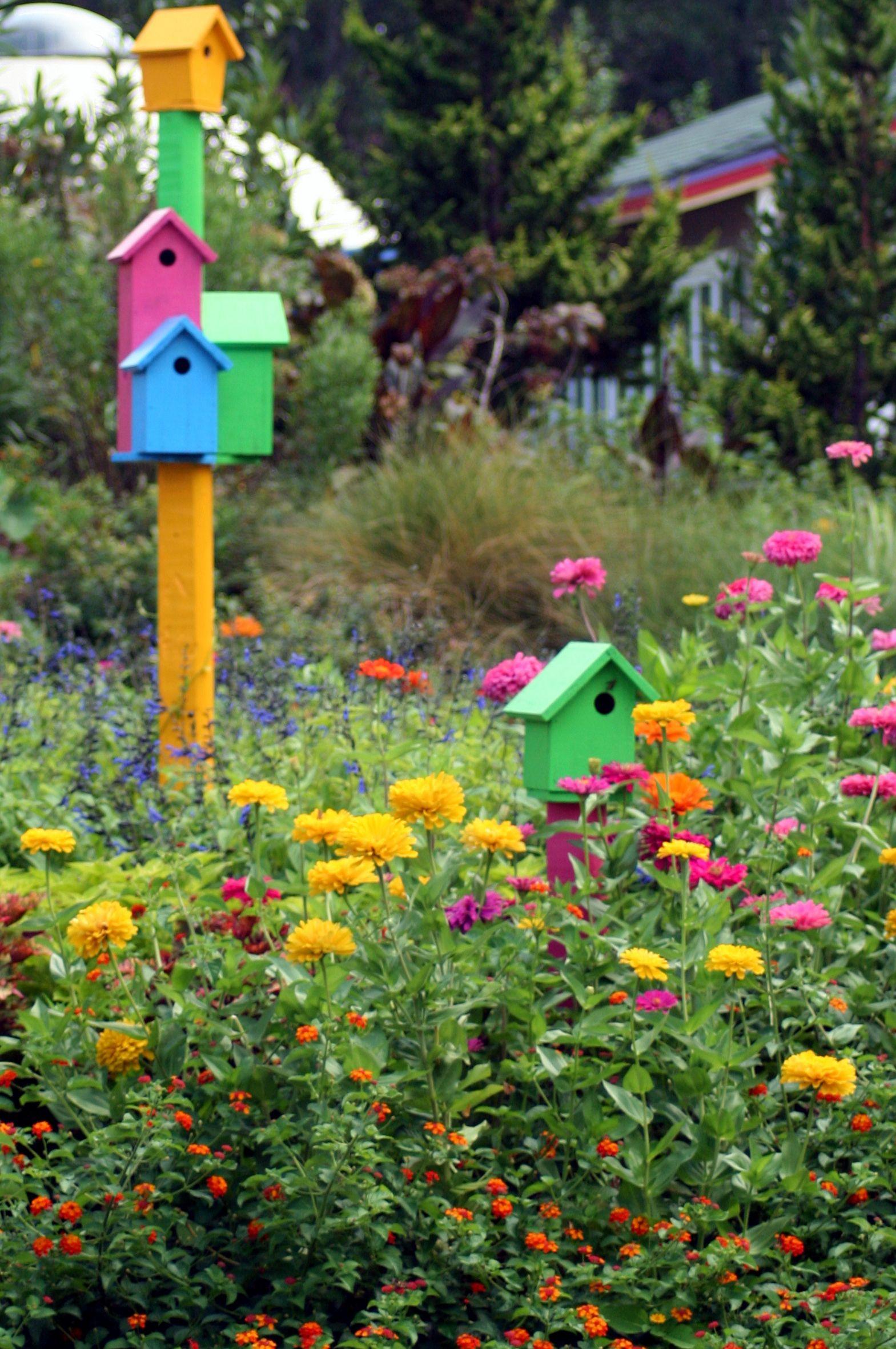 Zinnia garden & bird houses- Virginia Beach Botanical Garden ...