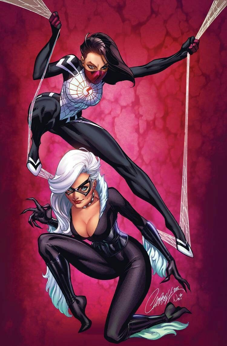 Black Cat & Silk