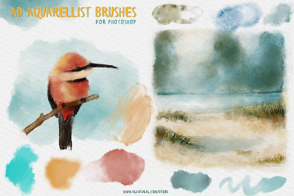 The Aquarellist Brushes Ps Cs6 Photoshop Brushes Watercolor